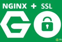 Nginx - HTTPS - SSL